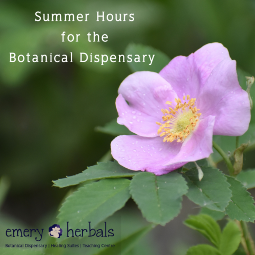 Summer Hours for the Botanical Dispensary